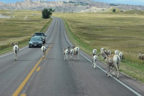 Big Horn Road