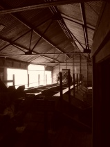 Inside the Argo Mine Mill